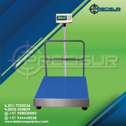 Balanza de Plataforma e-Accura WQ2 de 600 Kilos